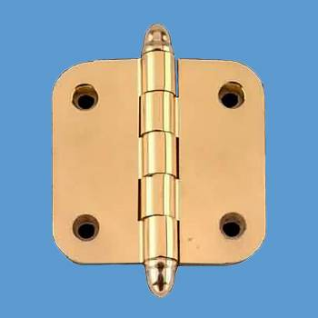 Door Hinges - Brass Hinge 2inx2in by the Renovator's Supply