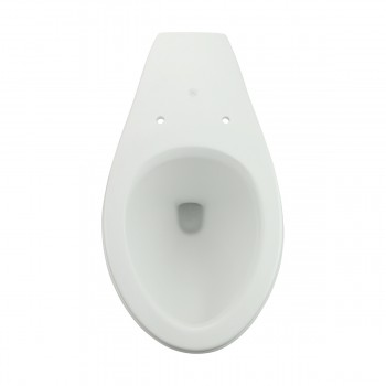 <PRE>Toilet Part White Sheffield Elongated Rear Entry Toilet Bowl Only</PRE>zoom9