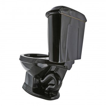 <PRE>Black Elegant Dual Flush Two-Piece Round Front Toilet</PRE>zoom9