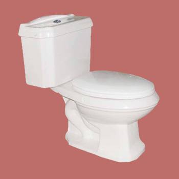 Toilets - Dual Flush Toilet Ashley  White, Elongated by the Renovator's Supply