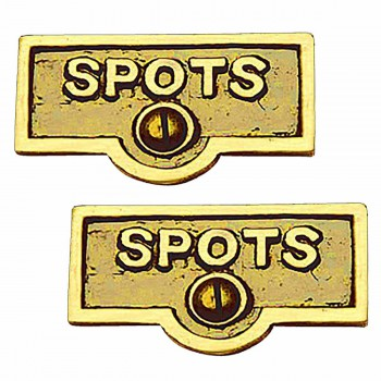 <PRE>2 Switch Plate Tags SPOTS Name Signs Labels Lacquered Brass </PRE>zoom1