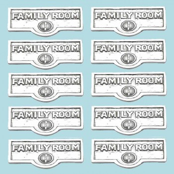 spec-<PRE>10 Switch Plate Tags FAMILY ROOM Name Signs Label Chrome Brass </PRE>