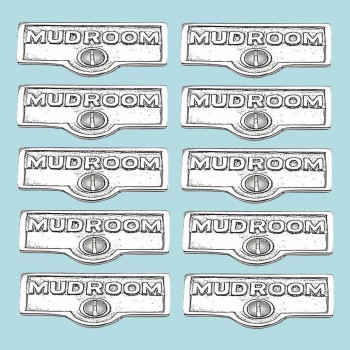 spec-<PRE>10 Switch Plate Tags MUDROOM Name Signs Labels Chrome Brass </PRE>