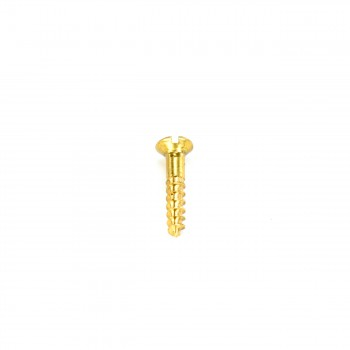 <PRE>Brass Oval Head Wood Screws # 6 3/4inch Qty 25 </PRE>zoom6