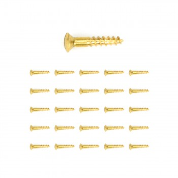Brass Oval Head Wood Screws  6 34 Qty 25