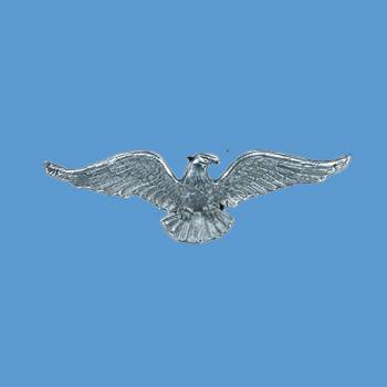 <PRE>American Bald Eagle Chrome Solid Brass  6 Inch X 19 Inch</PRE>zoom2