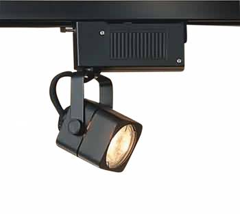 Track Lighting Black 4 Foot Track w/2 Light Set 98096grid